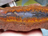 Plume Agate with Fortification Banding
